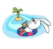在海滩的兔子 免版税库存照片
