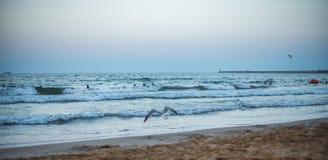 在海滩的全景日落 免版税库存照片