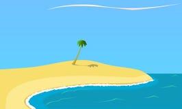 在海滩的单独棕榈 免版税库存照片