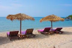 在海滩的四sunbeds 免版税库存图片