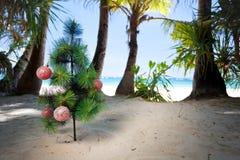 在海滩的圣诞树 库存照片
