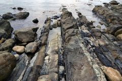 在海滨的复理层岩石在水中 库存图片