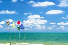 在海滩的多颜色旗子 库存照片