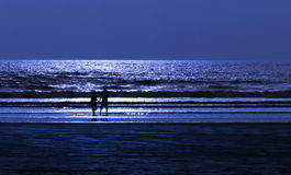 在海滩的夫妇在月光夜 库存照片