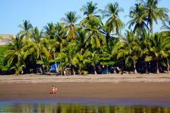 在海滩的家庭天 库存照片