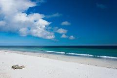 在海滩的小卵石位子 免版税库存照片
