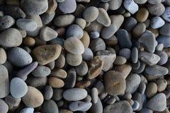 在海滩的小卵石 库存图片