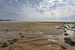 在海滩的小河 库存图片
