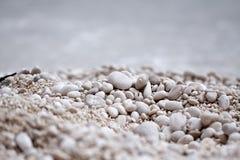 在海滩的小石头 免版税库存图片