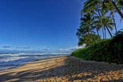 在海滩的影子 免版税图库摄影