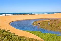 在海滩的德班南非夫妇走的狗 免版税库存图片
