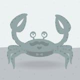 在海滩的快活的螃蟹 免版税库存照片