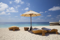在海滩的懒人在马尔代夫 免版税库存照片