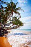 在海滩的掌上型计算机 免版税库存照片