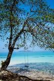 在海滩的摇摆 库存图片