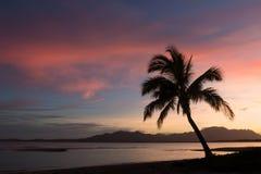 在海滩的日出,斐济 免版税库存图片