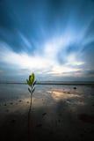 在海滩的日落在南部泰国 库存照片
