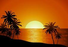 在海滩的日落视图与棕榈树 免版税库存图片