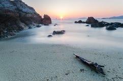 在海滩的木分支 免版税图库摄影