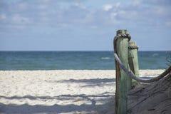 在海滩的木打桩 库存图片