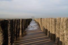 在海滩的木杆 免版税库存照片