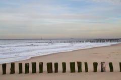 在海滩的木杆 免版税图库摄影