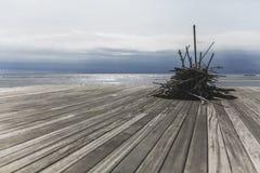 在海滩的木棍子 免版税库存照片