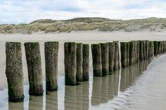 在海滩的木防堤在Nieuw Haamstede西兰省 图库摄影