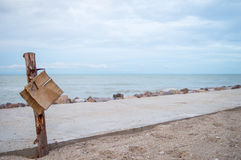 在海滩的树桩 免版税库存照片