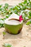在海滩的椰子水 免版税图库摄影