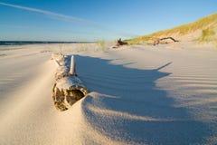 在海滩的沙丘在日落 库存照片