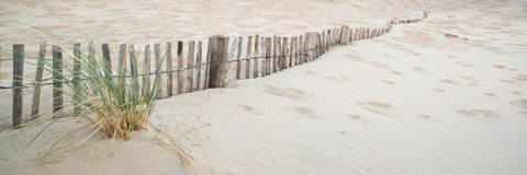 在海滩的沙丘系统全景风景在日出 免版税图库摄影