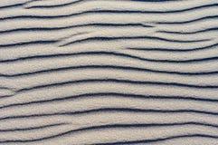 在海滩的沙子 免版税库存照片