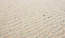 在海滩的沙波 库存图片