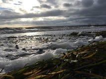 在海滩的泡沫 库存照片