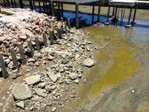 在海滩的泥石头 免版税图库摄影