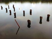在海洋的浮动木头 免版税库存照片