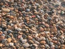 在海滩的海小卵石 免版税图库摄影