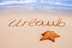 在海滩的海星。 库存照片