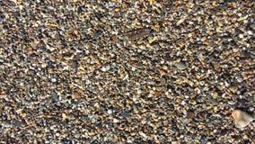 在海滩的海洋小卵石 库存照片