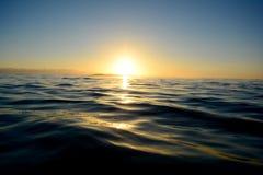 在海洋的清早 免版税库存图片