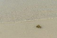 在海滩的清楚的水 图库摄影