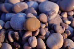 在海滩的湿小卵石在日落 图库摄影