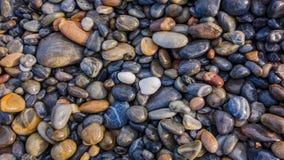 在海滨的湿小卵石 免版税图库摄影