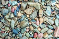 在海滩的湿岩石 免版税库存照片