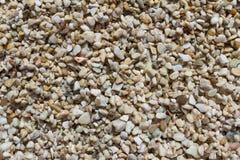 在海滩的湿石头 免版税库存照片