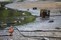 在海滩的漏油 图库摄影