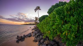 在海滩的热带日落小时 免版税库存照片