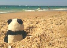 在海滩的熊猫 免版税库存照片