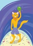 在海滩的猫 免版税库存图片